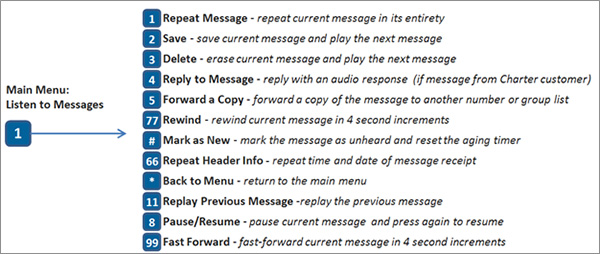 Enhanced Voicemail Options